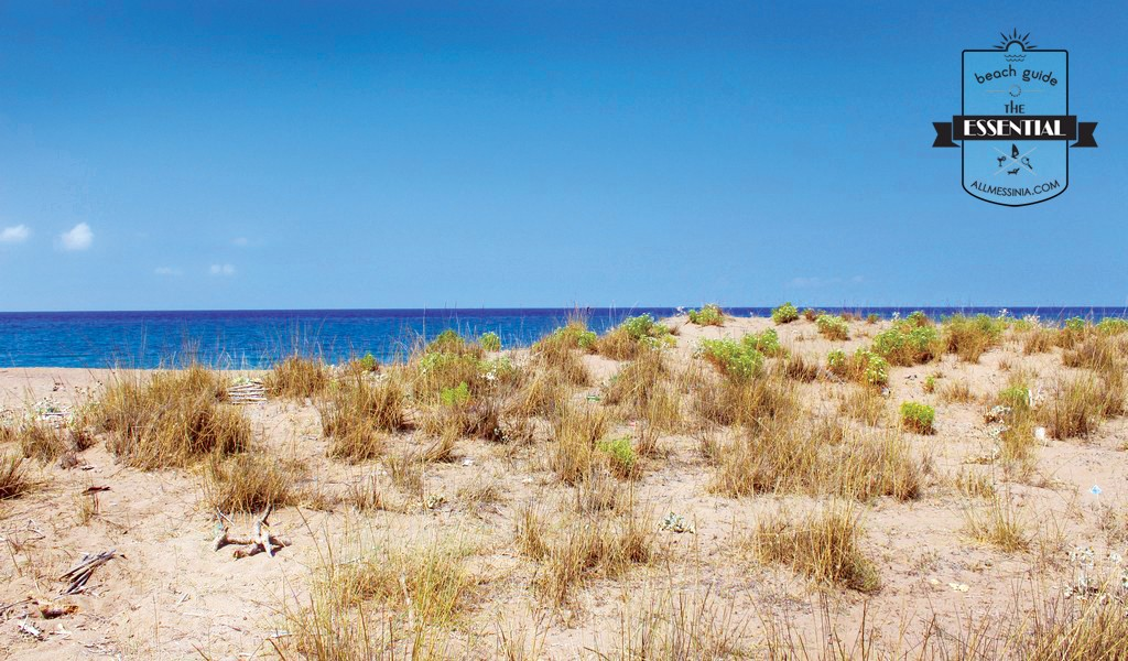 Elaia Beach Kyparissia - Sand dunes and interesting coastal flora