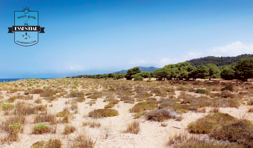 Elaia Beach Kyparissia - Backed with lush vegetation